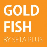 Gold Fish by Seta Plus